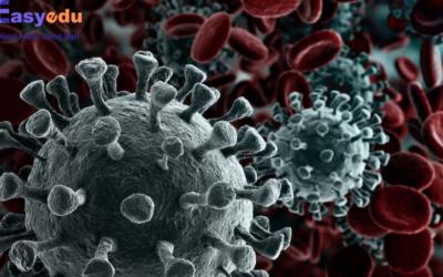 Cảnh báo về dịch viêm phổi Vũ Hán: Virus Corona( COVID-19), học sinh, sinh viên có thể nghỉ Tết Part 4